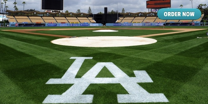 Los Angeles Dodgers Sod