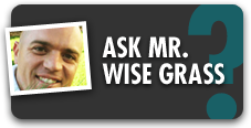 Ask Mr. Wise Grass Blog