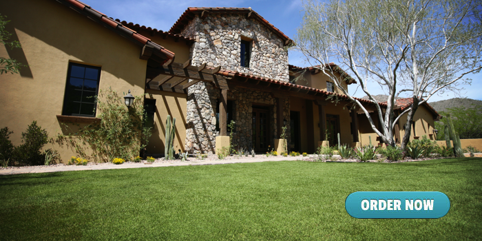 Arizona Home Sod Installation