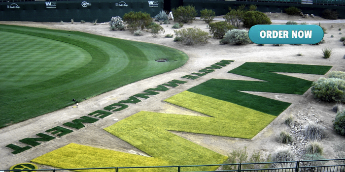 Phoenix Waste Management Open Golf Tournament Sod Installation