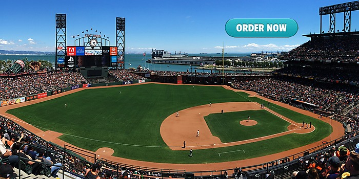 AT&T Park West Coast Turf Fescue