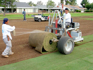 It Was A Win Situation West Coast Turf S John Marman Said Of The Decision To Strip Sod From Lake San Marcos Country Club And Install On Torrey